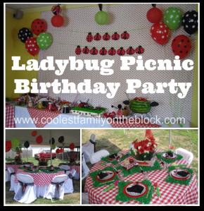 Ladybug Picnic Party
