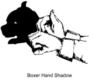 25 boxerhandshadow01c