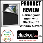 Product Review Blackout EZ Window Covers