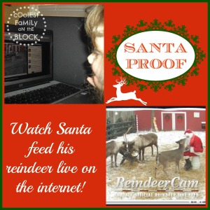 Watching Santa feed his reindeer